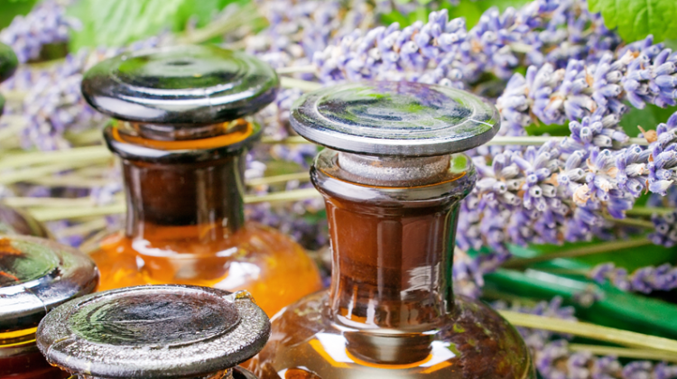Advanced Phytonic Extraction: Part II – The Uses of Phytosols